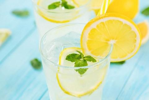 Fresh Lemonade/Fresh Limeade