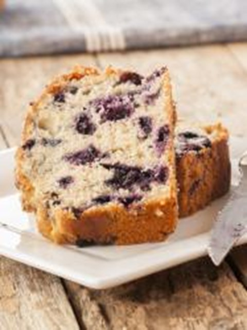 Lemon Blueberry Loaf Cake - Exact Heat Toaster Oven